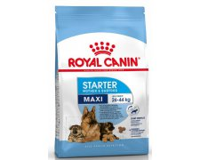 Royal Canin Maxi StarterMother & Babydog